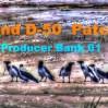 Roland D50 / D550 Producer Bank 01